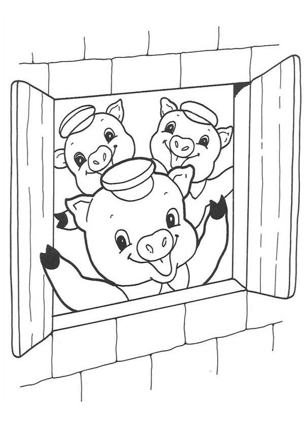 little pig coloring pages - photo#1